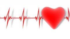 Bild-Herz-EKG.jpg